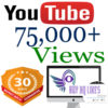 Buy YouTube Views and Likes